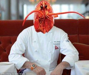 rockpool lobster william tinkle